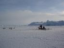 Fiskeri fra isen_2